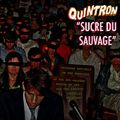 Play & Download Sucre Du Sauvage by Quintron | Napster