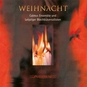Play & Download Weihnacht by Various Artists | Napster