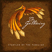 Play & Download Startled by the Familiar by The Gathering | Napster