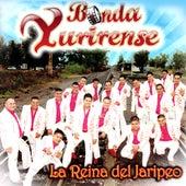 Play & Download La Reina Del Jaripeo by Banda Yurirense | Napster