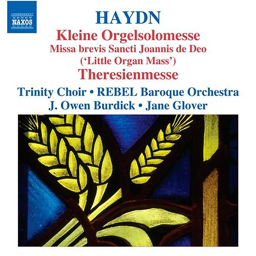 Play & Download Haydn: Kleine Orgelsolomesse - Theresienmesse by Various Artists | Napster