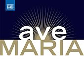 Ave Maria - Les Plus Beaux Ave Maria Et Chants A La Vierge (The Most Beautiful Ave Marias and Songs To the Virgin) by Various Artists