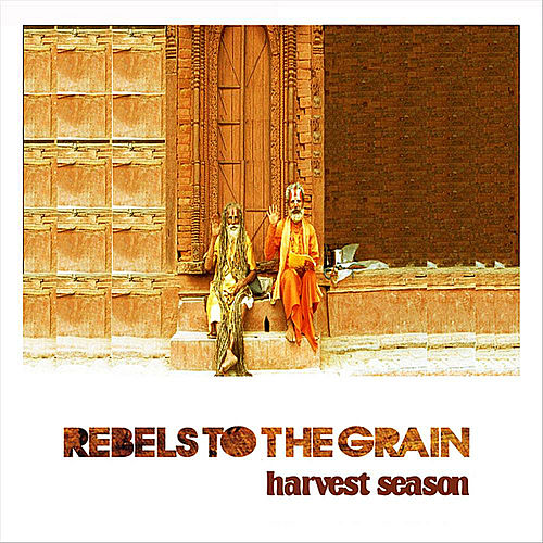 Play & Download Harvest Season by Rebels to the Grain | Napster