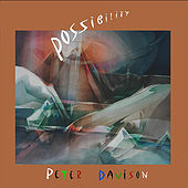 Possibility by Peter Davison