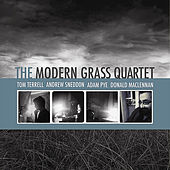 Play & Download The Modern Grass Quartet by The Modern Grass Quartet | Napster
