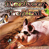 Play & Download Atardecer Tropical by La Chanchona Del Chaparralo | Napster