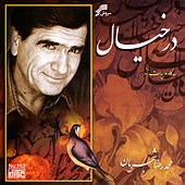 Play & Download Dar Khiyal by Mohammadreza Shajarian | Napster
