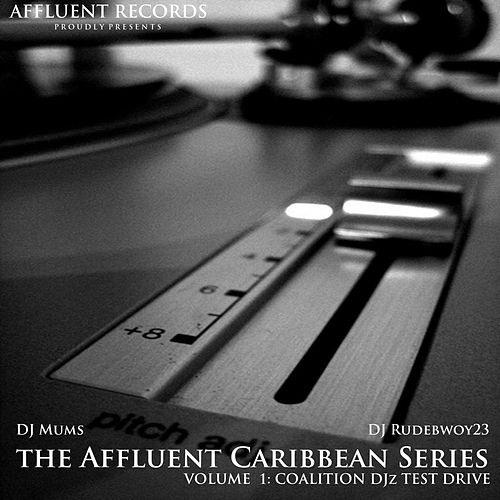 The Affluent Caribbean Series Vol1 by Various Artists