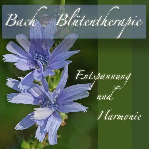 Bach Blütentherapie Entspannung und Harmonie by Pilates Music Ensemble