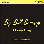 Play & Download Horny Frog by Big Bill Broonzy | Napster