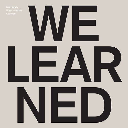 Play & Download What Have we Learned by Morphosis | Napster