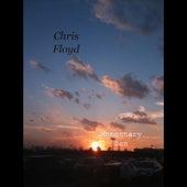 Momentary Zen by Chris Floyd