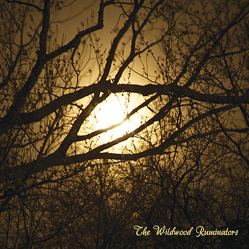 The Wildwood Ruminators by The Wildwood Ruminators