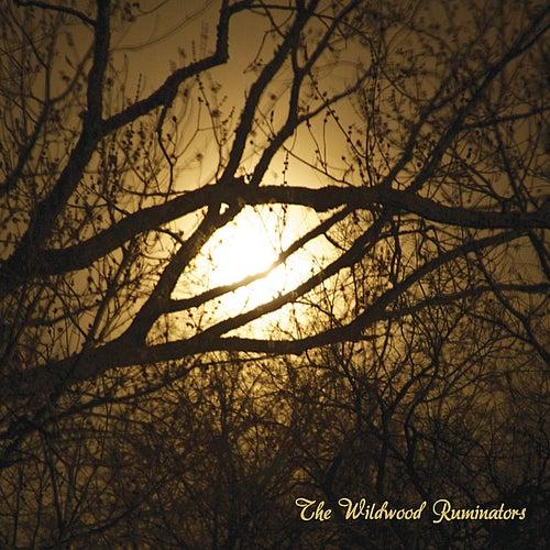 Play & Download The Wildwood Ruminators by The Wildwood Ruminators | Napster