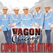 Play & Download Como Una Gelatina by Vagon Chicano | Napster