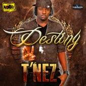 Destiny by T'Nez