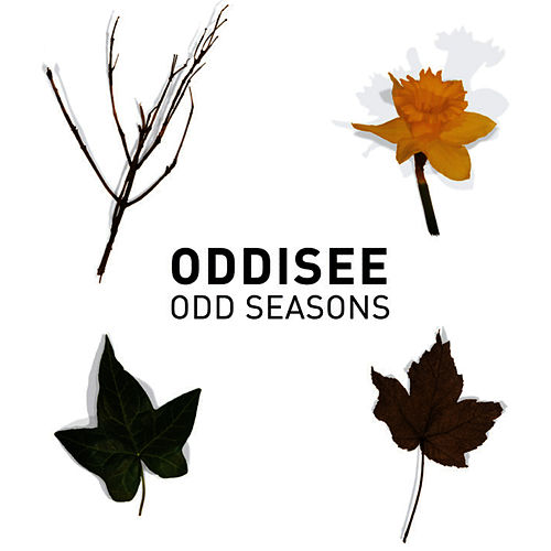 Odd Seasons by Oddisee
