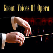 Play & Download Great Voices Of Opera by Various Artists | Napster