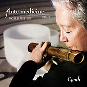 Play & Download Flute Medicine, Vol. 3 World Within by Cynth | Napster