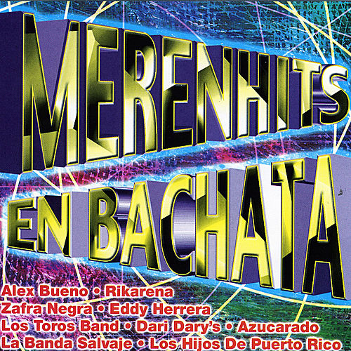 MerenHits En Bachatas by Various Artists