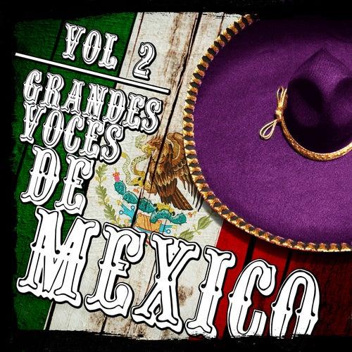Play & Download Grandes Voces De México. Vol.2 by Various Artists | Napster