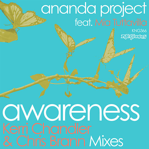 Play & Download Awareness by Ananda Project | Napster