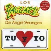 Play & Download Tu Y Yo by Los Yaguaru | Napster