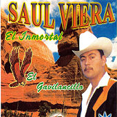 Play & Download Yo Soy El Triste by Saul Viera el Gavilancillo | Napster