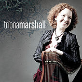 Irish Harp by Triona Marshall
