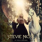 In Your Dreams von Stevie Nicks