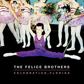 Celebration, Florida by The Felice Brothers
