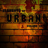 Elements Of Urban Vol.13 by Various Artists