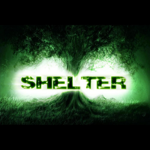 Play & Download Blacklight Friday by Shelter | Napster