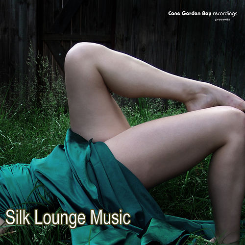 Play & Download Silk Lounge Music by Various Artists | Napster