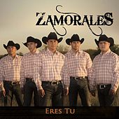 Play & Download Eres Tu by Zamorales | Napster