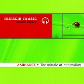Play & Download The Miracle of Minimalism by Laurent Dury | Napster