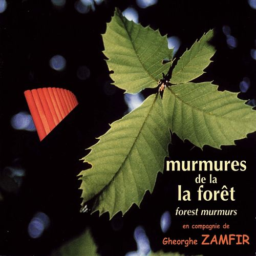 Murmures de la forêt (Forest Murmurs) by Various Artists