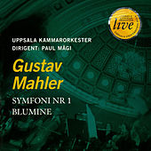 Play & Download MAHLER, G.: Symphony No. 1,