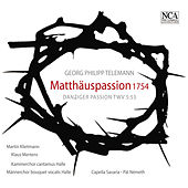 Telemann: St. Matthew Passion by Various Artists