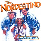 Xodo Do Brasil by Trio Nordestino