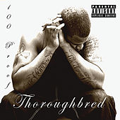 Play & Download Thoroughbred by 100 Proof (Aged In Soul) | Napster