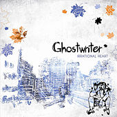 Irrational Heart by The Ghostwriter