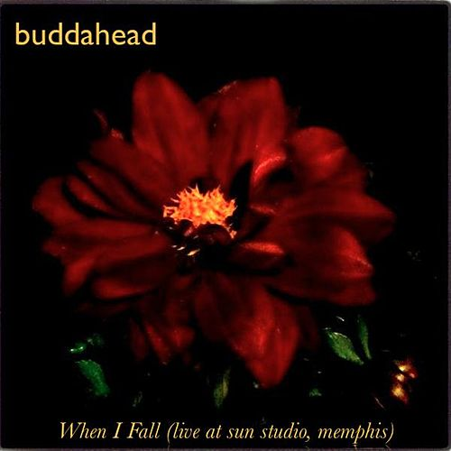 Play & Download When I Fall (live At Sun Studio, Memphis) - Single by Buddahead | Napster
