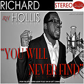 You Will Never Find by Richard Hollis