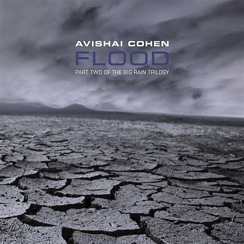 Flood by Avishai Cohen (bass)