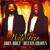 Wild Fire by Various Artists