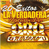 Play & Download 20 Exitos La Verdadera Historia by Oro Norteno | Napster