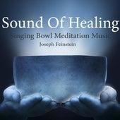 Sound of Healing: Singing Bowl Meditation Music by Joseph Feinstein