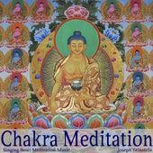 Chakra Meditation by Joseph Feinstein
