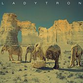Play & Download White Elephant by Ladytron | Napster